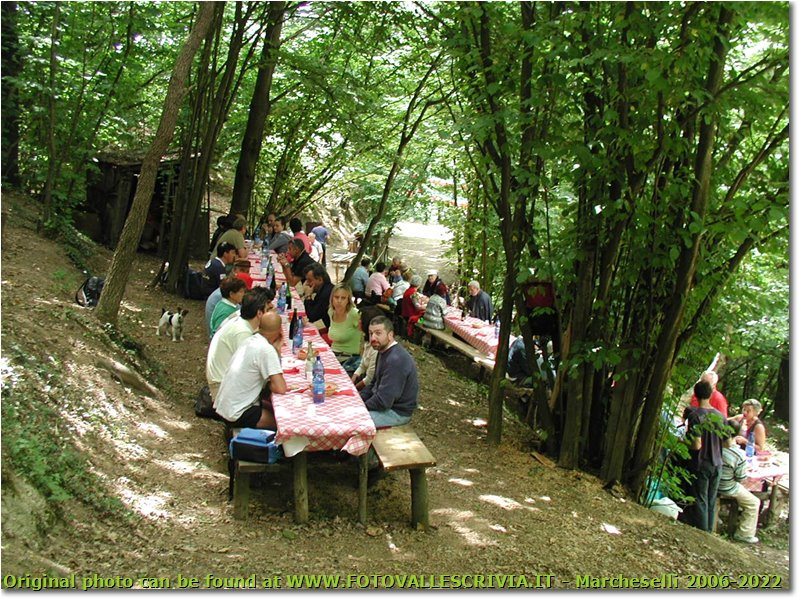 Fotografie Busalla&Ronco Scrivia - Boschi - Incontro annuale della squadra cinghiale di Ronco: alcune delle tavolate