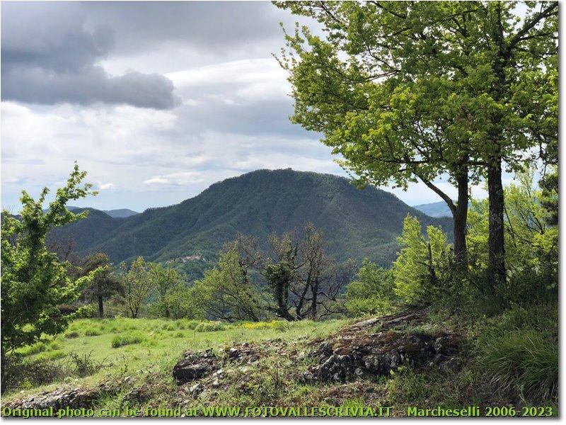 Fotografie Busalla&Ronco Scrivia - Panorami - M. Reale visto dalla Val Vobbia