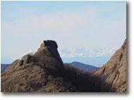 Foto Crocefieschi&Vobbia - Panorami - La lumaca del Reopasso e le Alpi