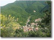 Foto Montoggio - Paesi - Pendici M. Bano: Rio Carpi