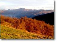 Foto Savignone - Panorami - Colori di fine autunno dal M. Cappellino