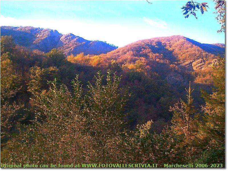 Foto Savignone - Panorami - Pendici M: Pianetto